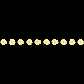 flower_line_yellow